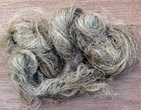 fibres-de-chanvre